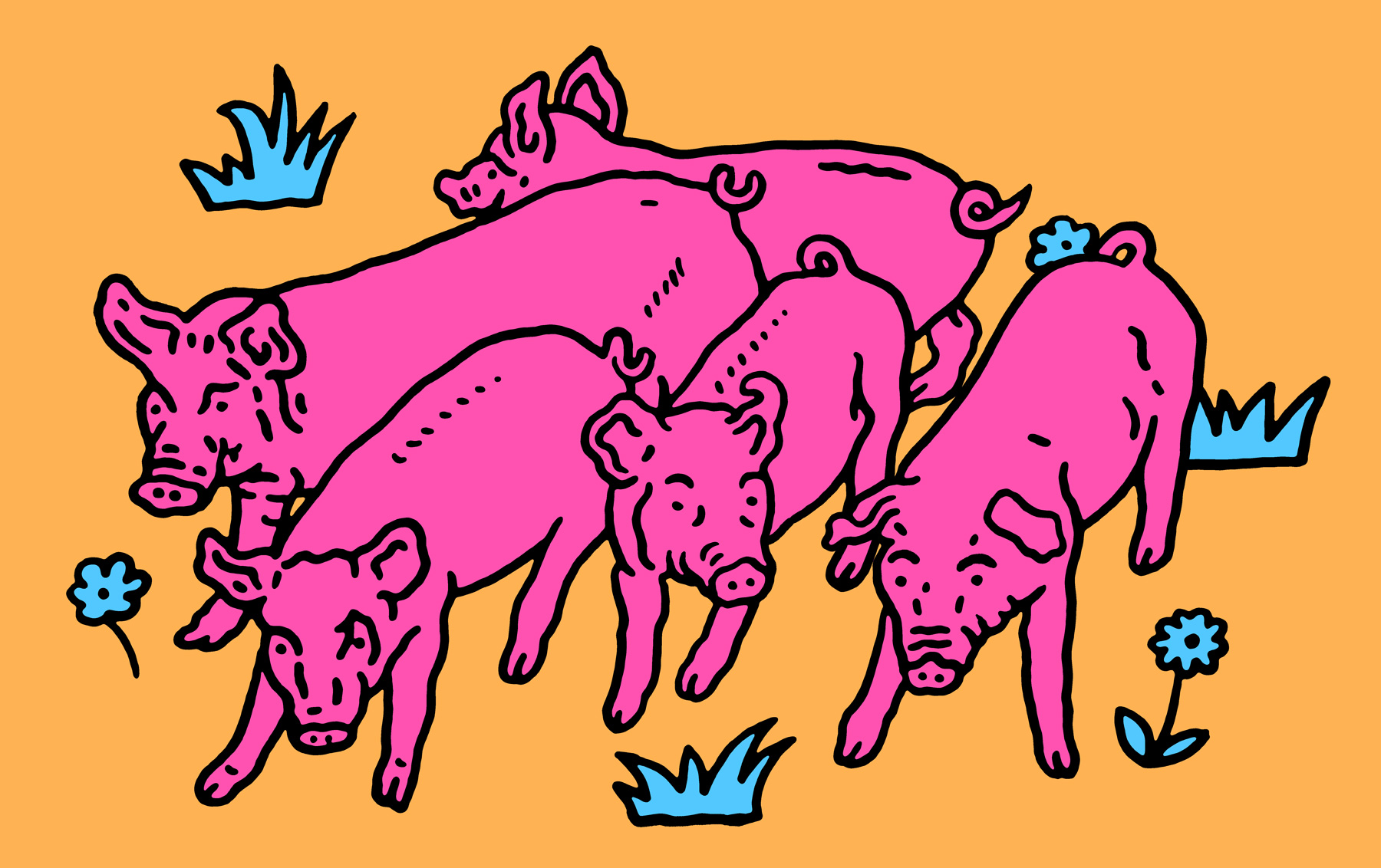 Gang-of-Five-Piglets